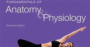 Fundamentals Of Anatomy  U0026 Physiology 11th Edition
