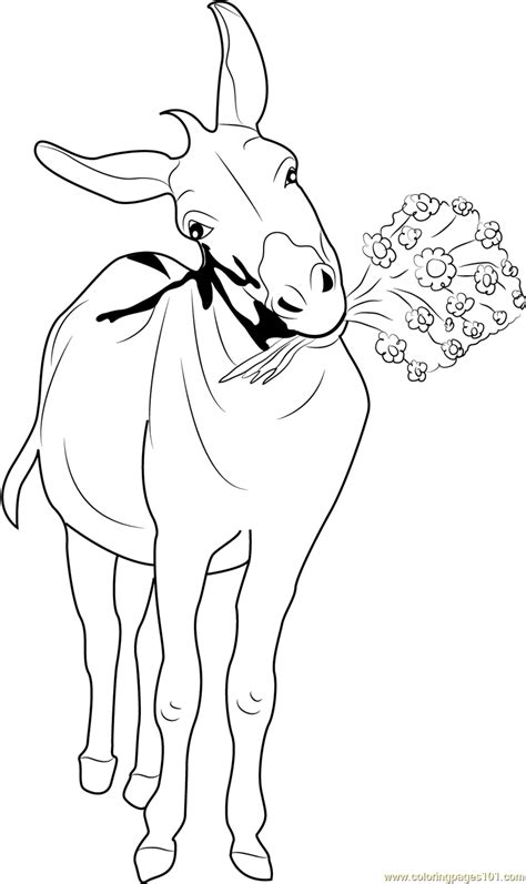 donkey  flowers coloring page  donkey coloring