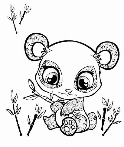 Panda Coloring Pages Colorings Printable Getcolorings Getdrawings