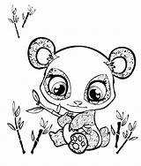 Panda Coloring Pages Printable Colorings Getdrawings Getcolorings sketch template