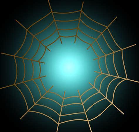 kostenlose illustration netz spinnennetz vernetzung