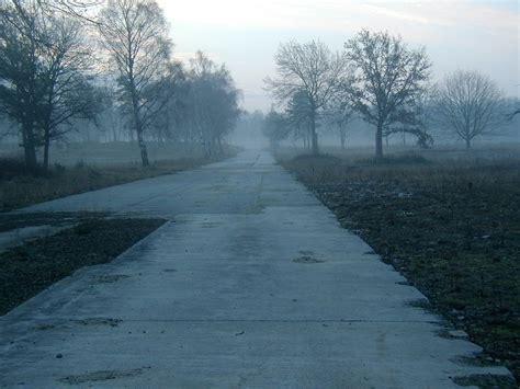 wetter morgen köln kostenlose foto baum natur schnee winter nebel