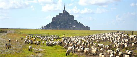 s 233 jour terroirs et traditions baie du mont michel tryvell vivez l authenticit 233