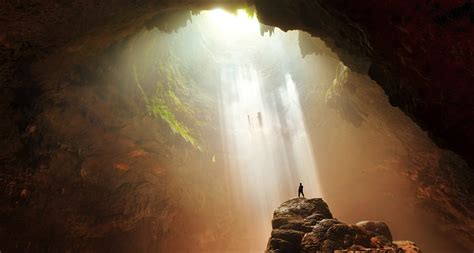 the cave and the light brains learning together act the same science news for