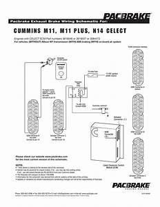 Cummins M11  M11 Plus  N14 Celect