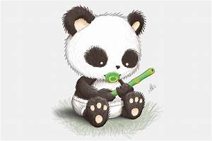 Baby Panda Drawing