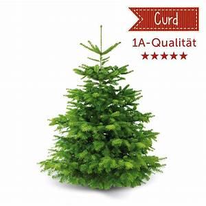 Künstliche Weihnachtsbäume Kaufen : nordmanntanne curd ca 175 cm weihnachtsb ume santa fidi weihnachtsb ume online kaufen ~ Indierocktalk.com Haus und Dekorationen