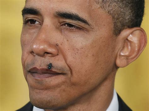 Obama Pestered By Religious Nuts Lazer Horse