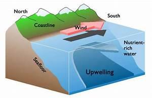 Deep Ocean Currents  Lesson 0123