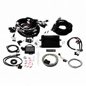 Holley U00ae 550-614 - Terminator U2122 Ls Mpfi Kit