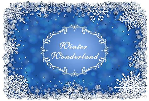 Winter Birthday Background by 2019 Blue Winter Backdrop Vinyl Printed White