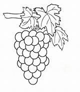 Grapes Coloring Pages Clipart Weintrauben Print Raskraska Vinograd sketch template