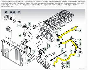 Want To Replace Cooling System Heater Hoses  - Bimmerfest