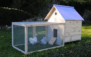Blé Pour Poule Pas Cher : je cherche un poulailler pas cher guide pour lever des poules dans son jardin ~ Carolinahurricanesstore.com Idées de Décoration