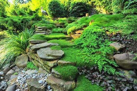 Moss Lighting by More Landscape And Garden Design Ideas And Improving Values