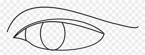 Line Art Drawing Eye Diagram