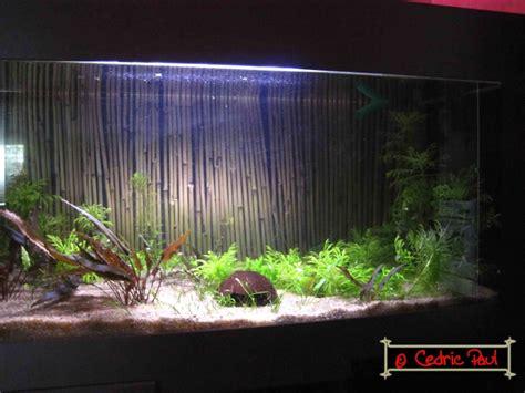 jeux d aquarium virtuel jeu aquarium