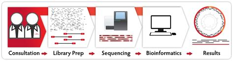 Illumina Customer Service Next Sequencing Services