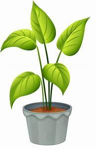 Pot De Fleur Transparent : pot plant clipart flowering plant pencil and in color pot plant clipart flowering plant ~ Teatrodelosmanantiales.com Idées de Décoration
