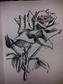 deviantART Roses Drawing