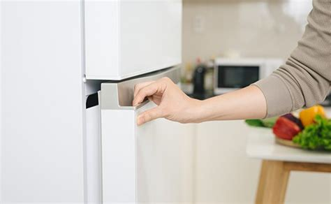 refrigerator  smelly ice cubes tiger mechanical