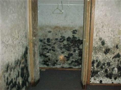 basement flood cincinnati  cincinnati water