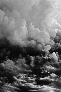 Best 500  Black And White Nature Pictures