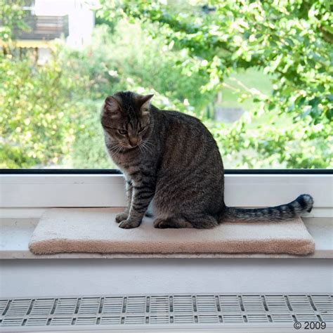 Window Sill Mat window sill mat plush cat beds at zooplus