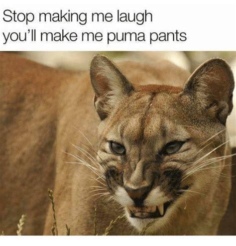 Puma Pants Meme - stop making me laugh you ll make me puma pants meme on sizzle