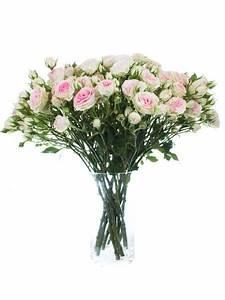 Blumen Im November : die 25 besten ideen zu november hochzeits blumen auf ~ Lizthompson.info Haus und Dekorationen