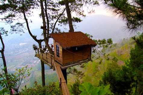 keunikan omah kayu malang bukan rumah kayu biasa