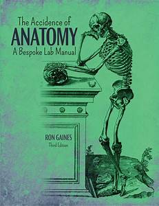 The Accidence Of Anatomy  A Bespoke Lab Manual