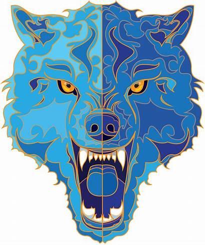 Wolf Illustration Behance