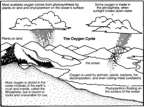 NCERT Class 9 Science Solutions: Chapter 14 Natural ...