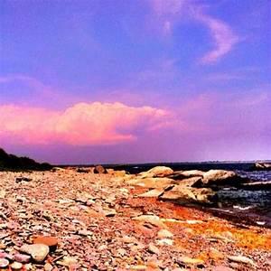 8 best Newburyp... Plum Island Quotes