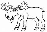Moose Coloring Pages Elk Cartoon Drawing Printable Bull Clipart Colors Colouring Cliparts Sheets Clip Animal Drawings Cool2bkids Getcolorings Library Getcoloringpages sketch template