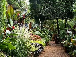 Plantes Exotiques Rustiques : professional gardeners 39 guild visit to norwich exotic ~ Melissatoandfro.com Idées de Décoration
