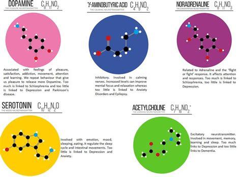 biopsychology  types  neurotransmitters teaching
