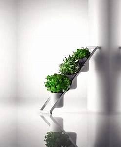 Herbes Aromatiques En Pot : tout pour vos plantes aromatiques lire ~ Premium-room.com Idées de Décoration