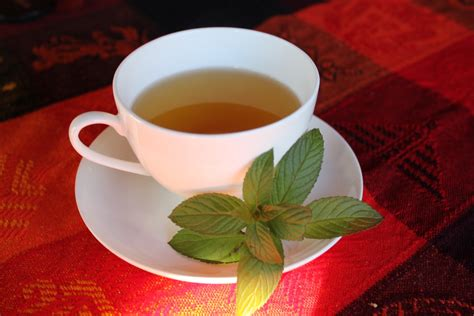 peppermint tea tea cabinorganic