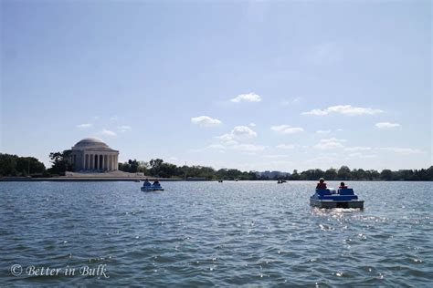 Tidal Basin Paddle Boats by Tidal Basin Paddle Boats At The Jefferson Memorial In