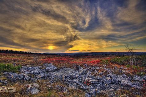 dolly sods cabins 7 stunning photos that show the of dolly sods