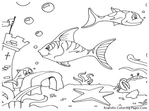 ocean fish coloring pages realistic coloring pages