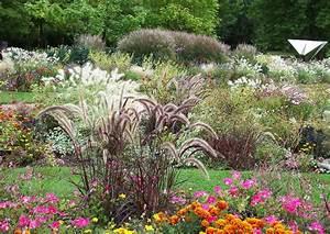Ziergräser Im Garten Bilder : ziergr ser pennisetumsetaceum rubrum afrikanisches lampenputzergras ~ Sanjose-hotels-ca.com Haus und Dekorationen