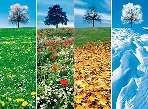 Four Seasons Celle : nos quatre saisons l 39 unit ~ A.2002-acura-tl-radio.info Haus und Dekorationen