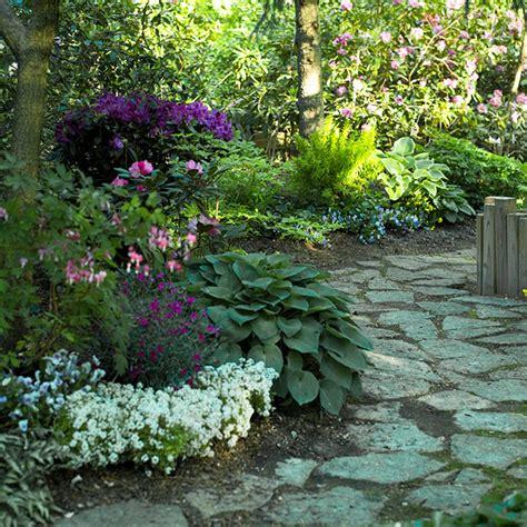 plants for patio borders best plants for landscape edging