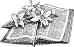 trauersprüche bibel trostsprüche bibelzitate biblische sprüche zu tod sterben trauer