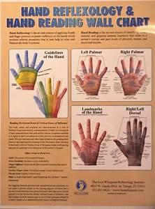 Hand Reflexology  U0026 Hand Reading Wall Chart