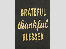 Grateful Thankful Blessed Baseball TShirt Fairyseason