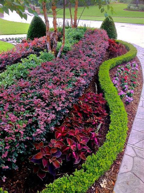 seasonal plants add  punch  color   landscape